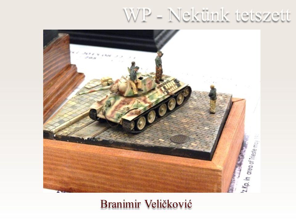 Branimir Veličković WP - Nekünk tetszett
