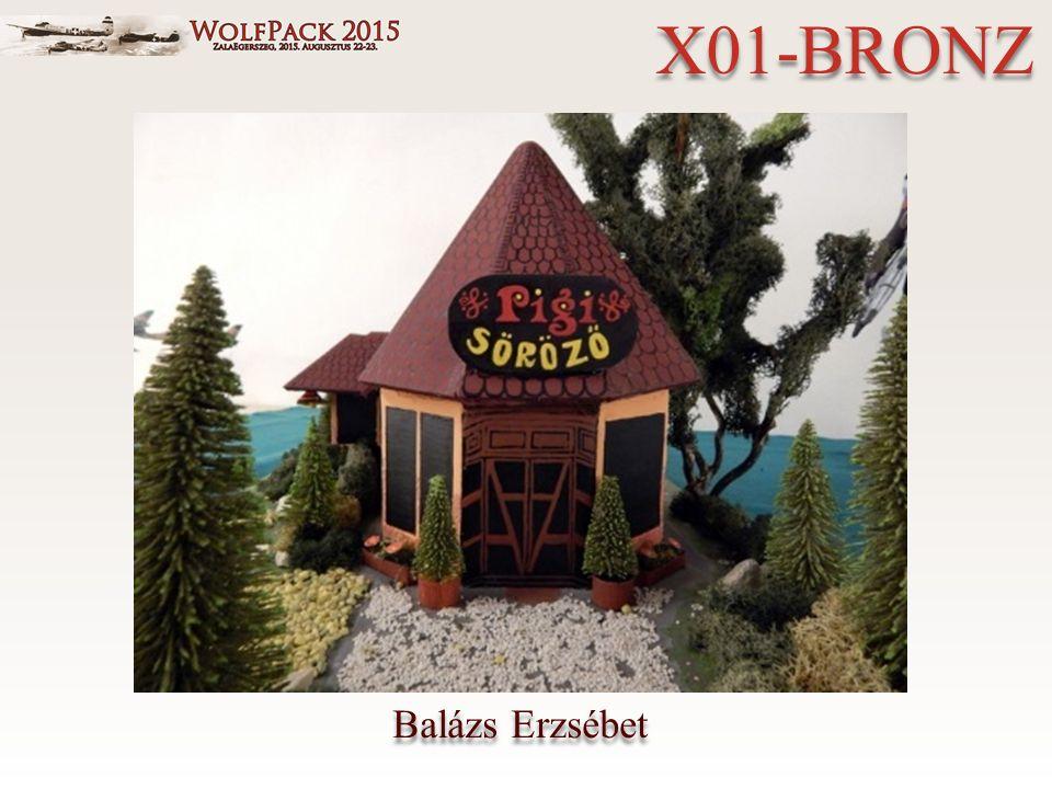 Balázs Erzsébet X01-BRONZ