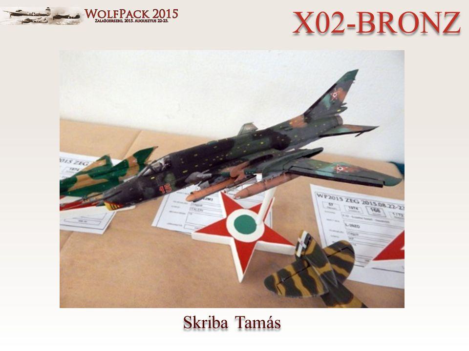 Skriba Tamás X02-BRONZ