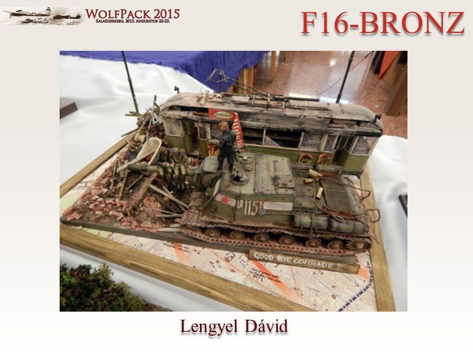 Lengyel Dávid F16-BRONZ