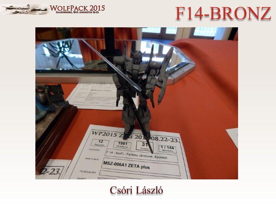Csóri László F14-BRONZ