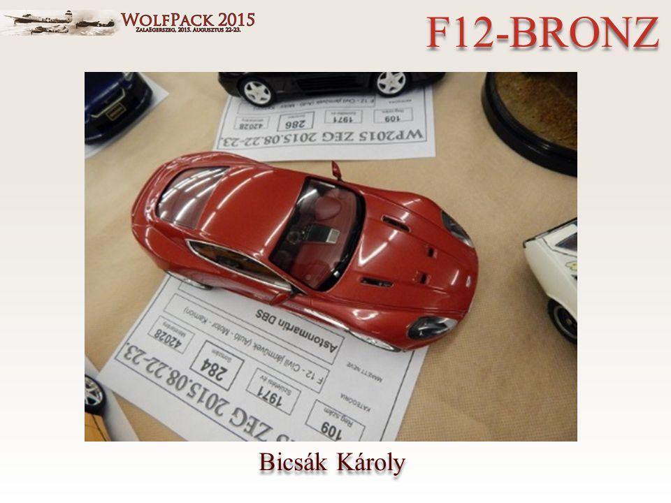 Bicsák Károly F12-BRONZ