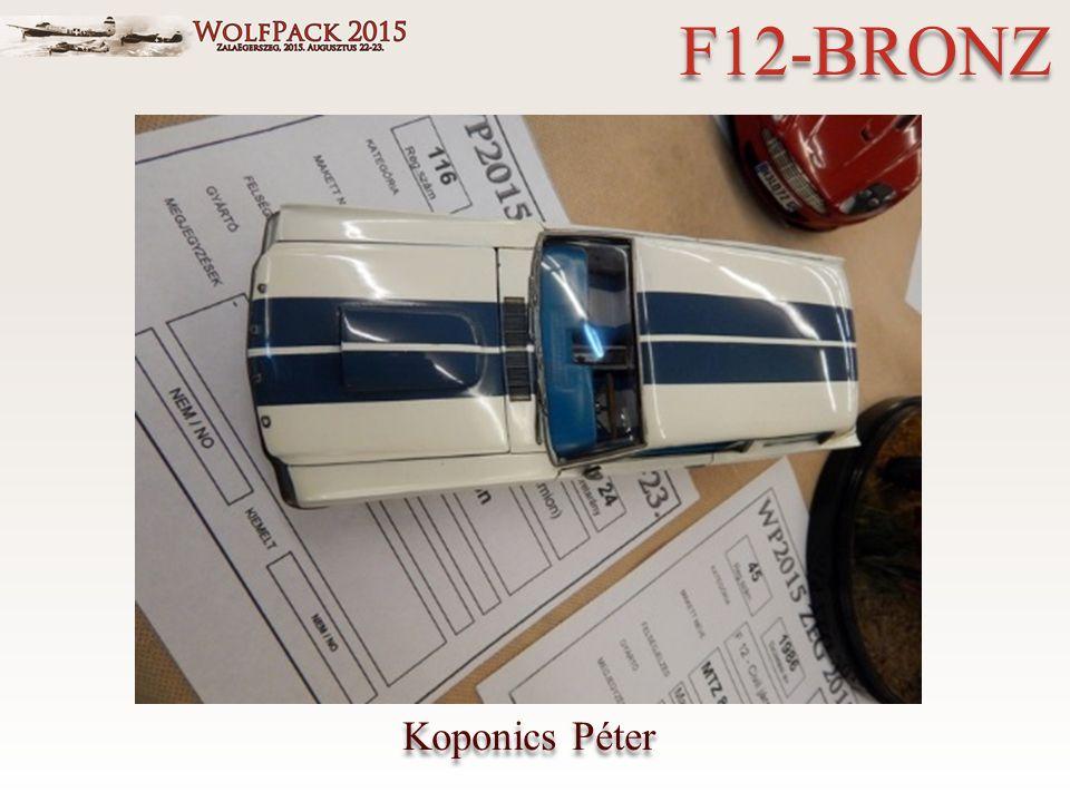 Koponics Péter F12-BRONZ