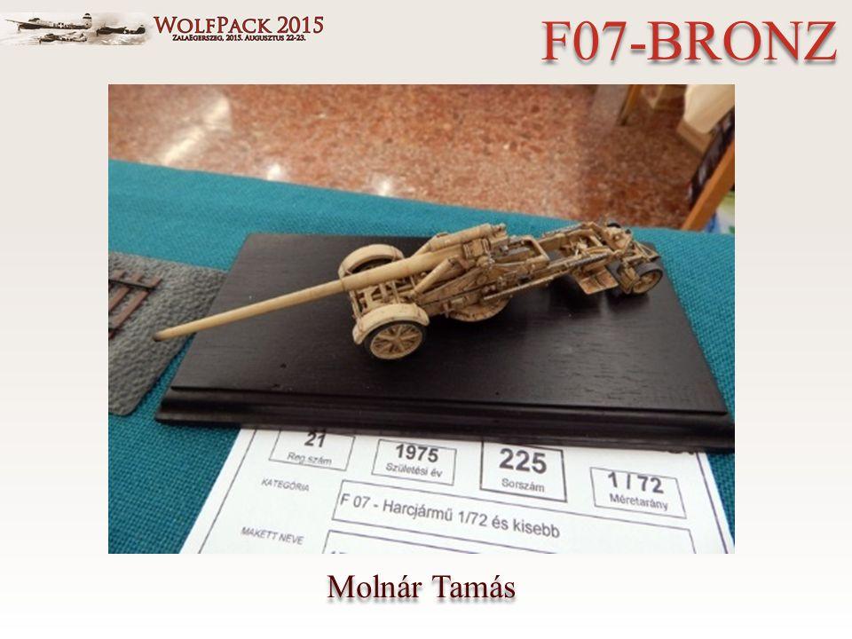 Molnár Tamás F07-BRONZ