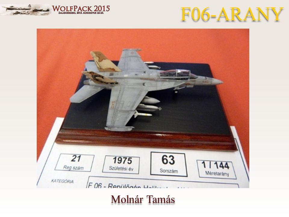Molnár Tamás F06-ARANY