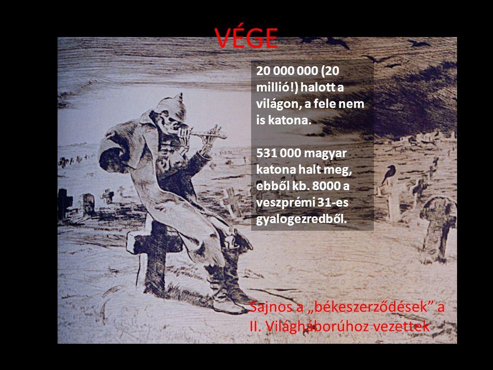 20 000 000 (20 millió!) halott a világon, a fele nem is katona. 531 000 magyar katona halt meg, ebből kb. 8000 a veszprémi 31-es gyalogezredből. Sajno
