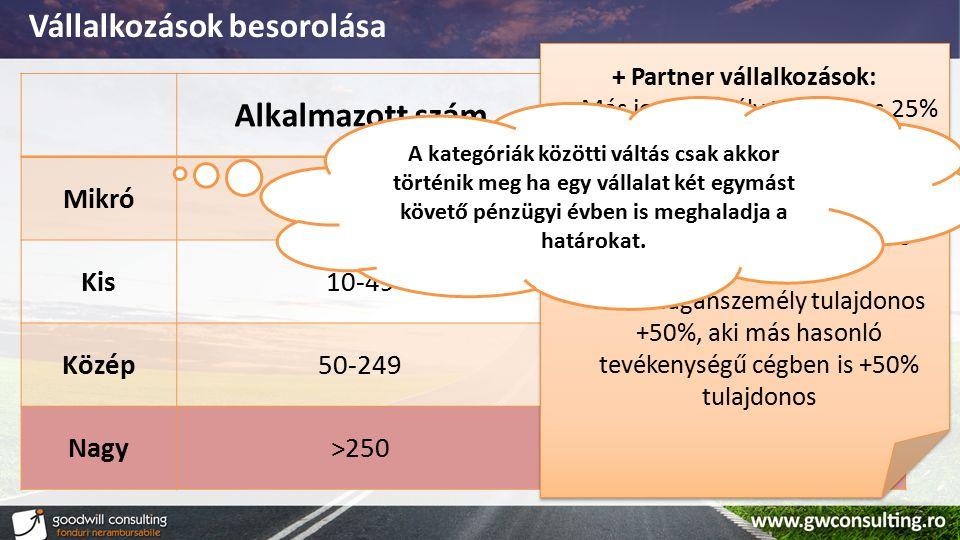 Vállalkozások besorolása Alkalmazott számCIFRA DE AFACERI Mikró0-90 – 2 mil. € Kis10-490 – 10 mil. € Közép50-2490 – 50 mil. € Nagy>250- + Partner váll