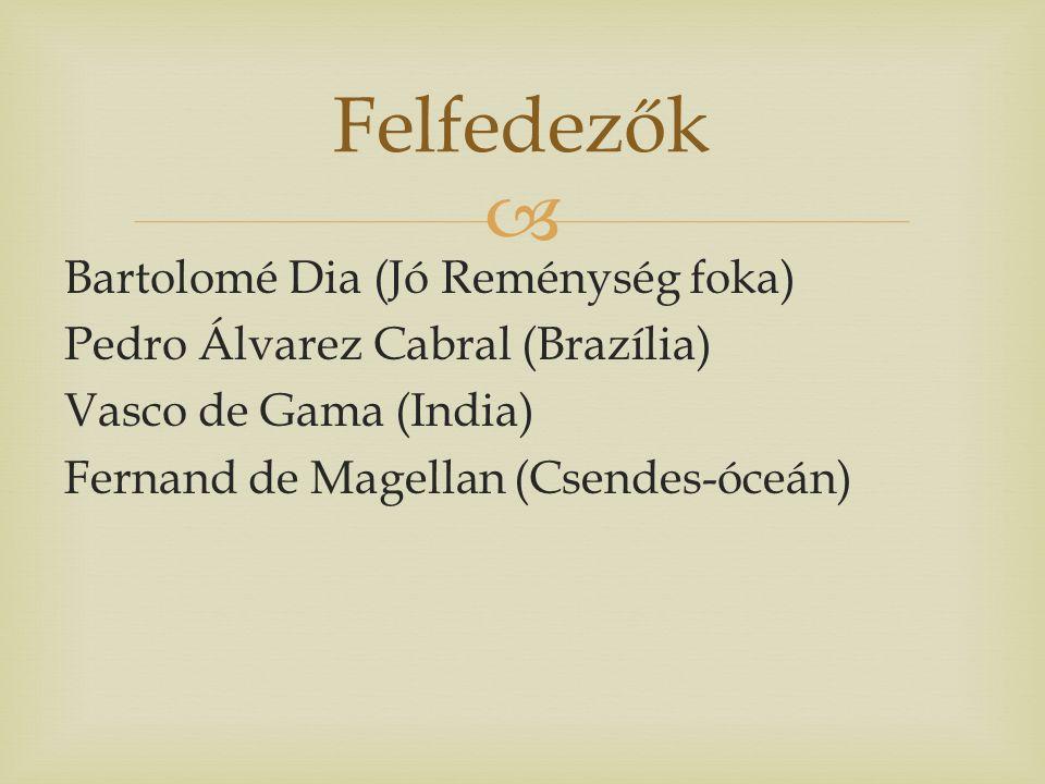  Bartolomé Dia (Jó Reménység foka) Pedro Álvarez Cabral (Brazília) Vasco de Gama (India) Fernand de Magellan (Csendes-óceán) Felfedezők