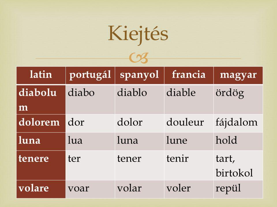  Portugál nyelv múzeuma