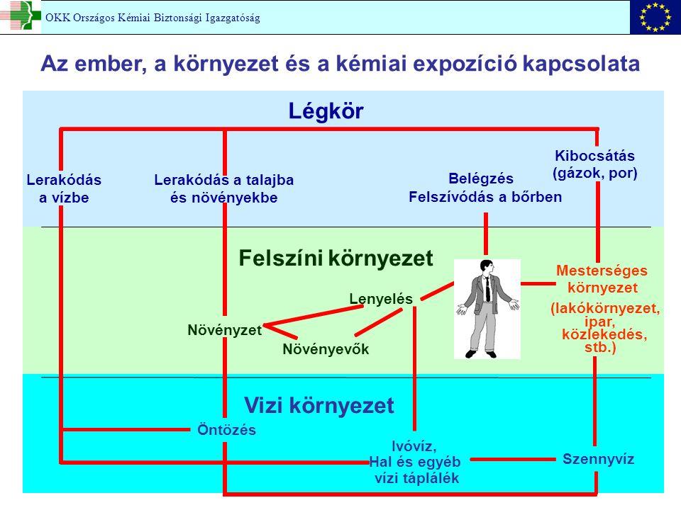 A daganatok kialakulásának folyamata KIINDULÁS (INICIÁCIÓ) ELŐREHALADÁS (PROMÓCIÓ) ELHATALMASODÁS (PROGRESSZIÓ) JAVÍTÁSSEJTHALÁL DNS-károsodásOSZTÓDÁS EGÉSZSÉGES SEJT INICIÁLT SEJT DAGANAT SEJTEK RÁK + - 1.kémiai támadás: a DNS károsodása 2.kémiai támadás: a jelátviteli utak károsodása Sztochasztikus / determinisztikus hatás (kis dózisok!) 1.
