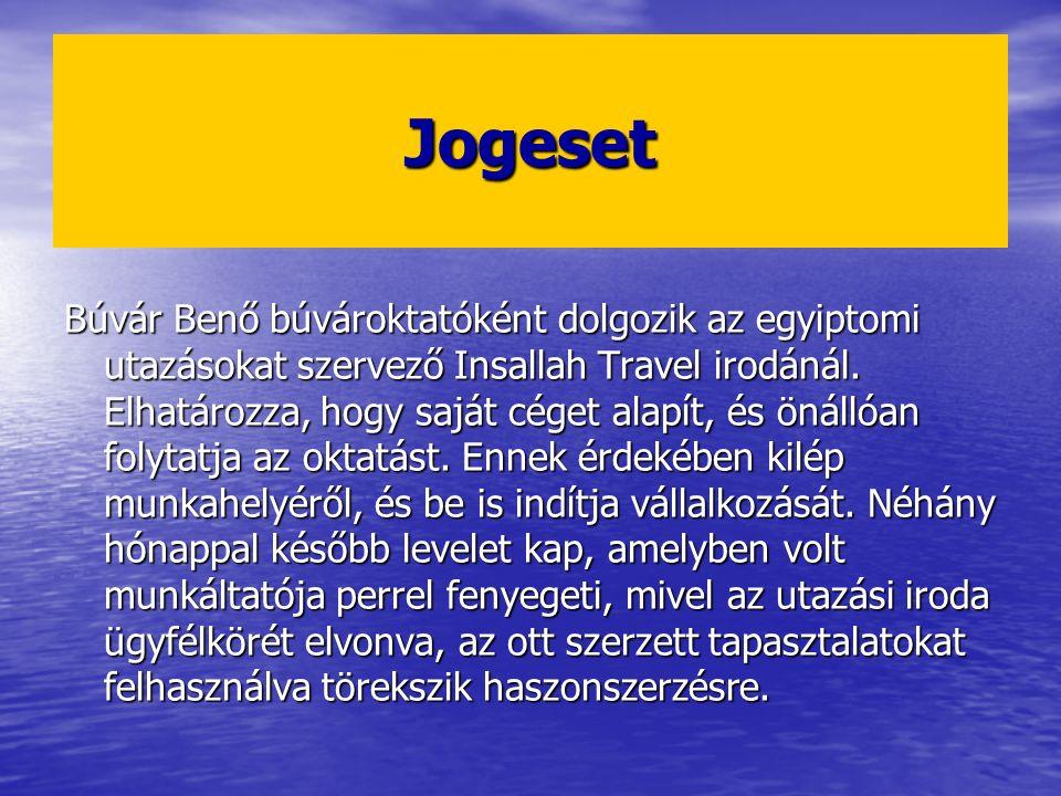 Jogeset Búvár Benő búvároktatóként dolgozik az egyiptomi utazásokat szervező Insallah Travel irodánál. Elhatározza, hogy saját céget alapít, és önálló