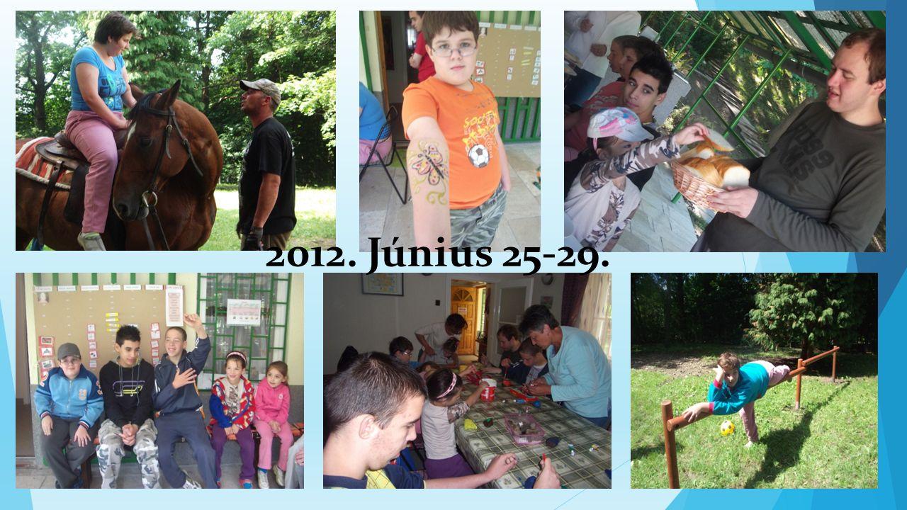2012. Június 25-29.