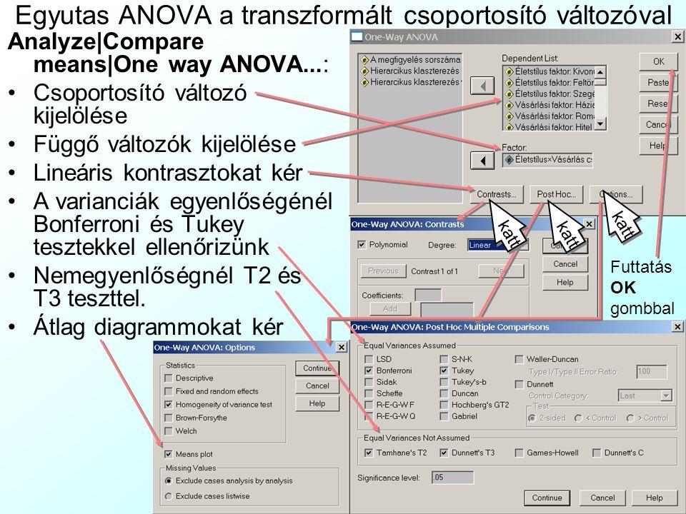 A 6 kombinált csoport változója Ezt a lifshcl6 nevű változót a Transform|Compute menüben számoljuk ki: –Beállítjuk az új változó nevét, típusát, címkéjét –Felírjuk magunknak papíron az alábbi átszámító táblázatot –Az If...