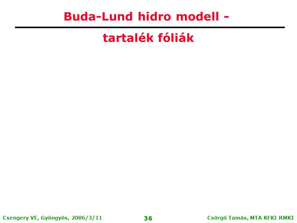 Csörgő Tamás, MTA KFKI RMKI 35 Csengery VE, Gyöngyös, 2006/3/11 12 ország lobogója között a magyar!