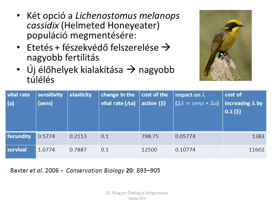 Két opció a Lichenostomus melanops cassidix (Helmeted Honeyeater) populáció megmentésére: Etetés + fészekvédő felszerelése  nagyobb fertilitás Új élőhelyek kialakítása  nagyobb túlélés vital rate (a) sensitivity (sens) elasticity change in the vital rate (  a) cost of the action ($) cost of increasing by 0.1 ($) fecundity0.57740.21130.1798.750.057741383 survival1.07740.78870.1125000.1077411602 Baxter et al.