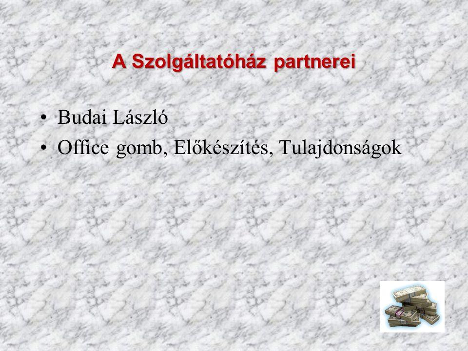 A Szolgáltatóház partnerei Budai László Office gomb, Előkészítés, Tulajdonságok