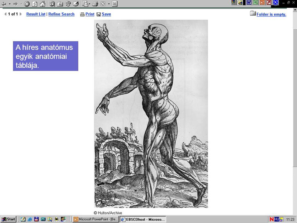 A híres anatómus egyik anatómiai táblája.
