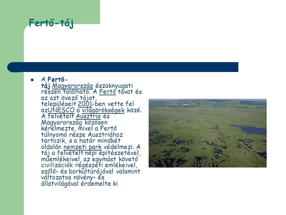 Fertő-táj A Fertő- táj Magyarország északnyugati részén található. A Fertő tavat és az azt övező tájat, településeit 2001-ben vette fel azUNESCO a vil
