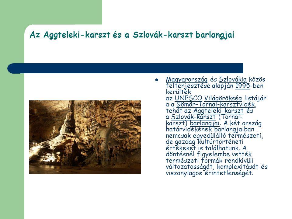Az Aggteleki-karszt és a Szlovák-karszt barlangjai Magyarország és Szlovákia közös felterjesztése alapján 1995-ben kerültek az UNESCO Világörökség lis
