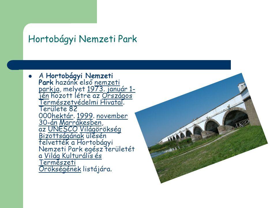 Hortobágyi Nemzeti Park A Hortobágyi Nemzeti Park hazánk első nemzeti parkja, melyet 1973.