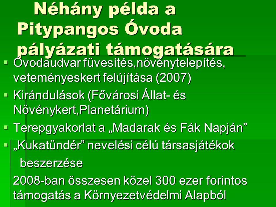 Néhány példa a Pitypangos Óvoda pályázati támogatására Néhány példa a Pitypangos Óvoda pályázati támogatására  Óvodaudvar füvesítés,növénytelepítés,