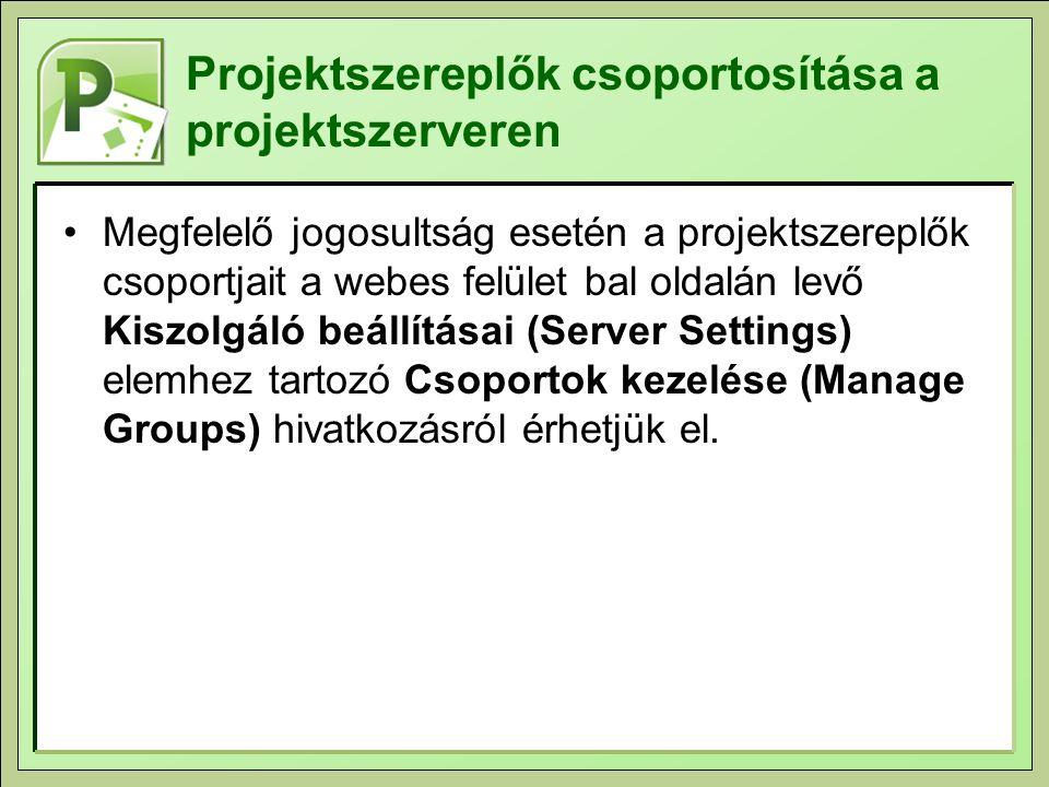 Projektszereplők csoportosítása a projektszerveren Megfelelő jogosultság esetén a projektszereplők csoportjait a webes felület bal oldalán levő Kiszol