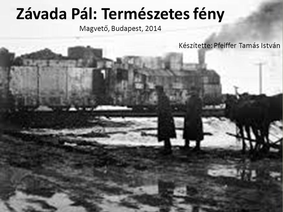 Závada Pál: Természetes fény Magvető, Budapest, 2014 Készítette: Pfeiffer Tamás István