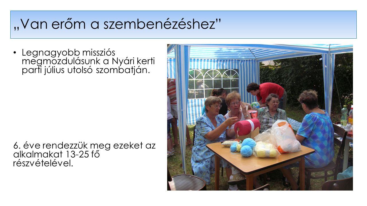 Legnagyobb missziós megmozdulásunk a Nyári kerti parti július utolsó szombatján.