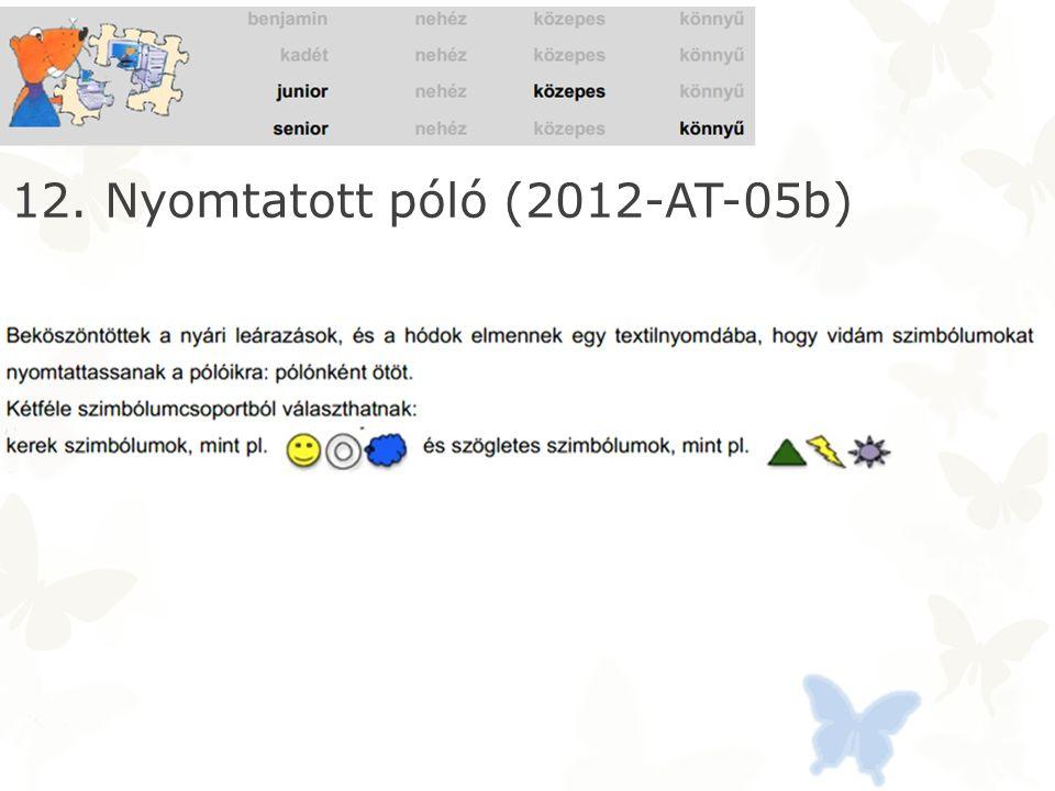 12. Nyomtatott póló (2012-AT-05b)