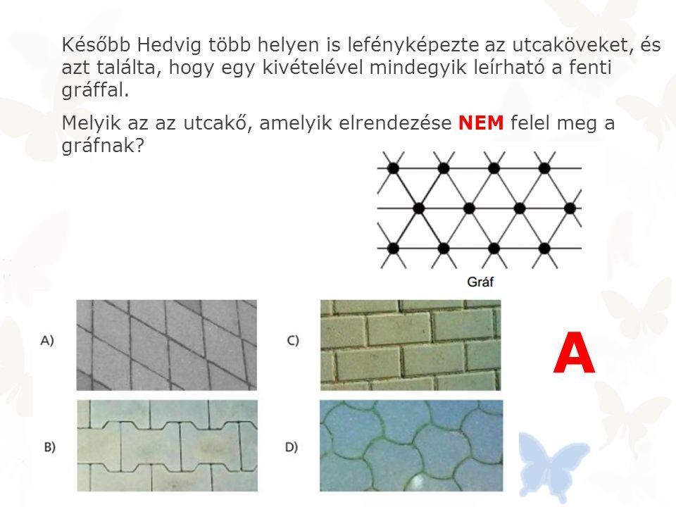 Később Hedvig több helyen is lefényképezte az utcaköveket, és azt találta, hogy egy kivételével mindegyik leírható a fenti gráffal.