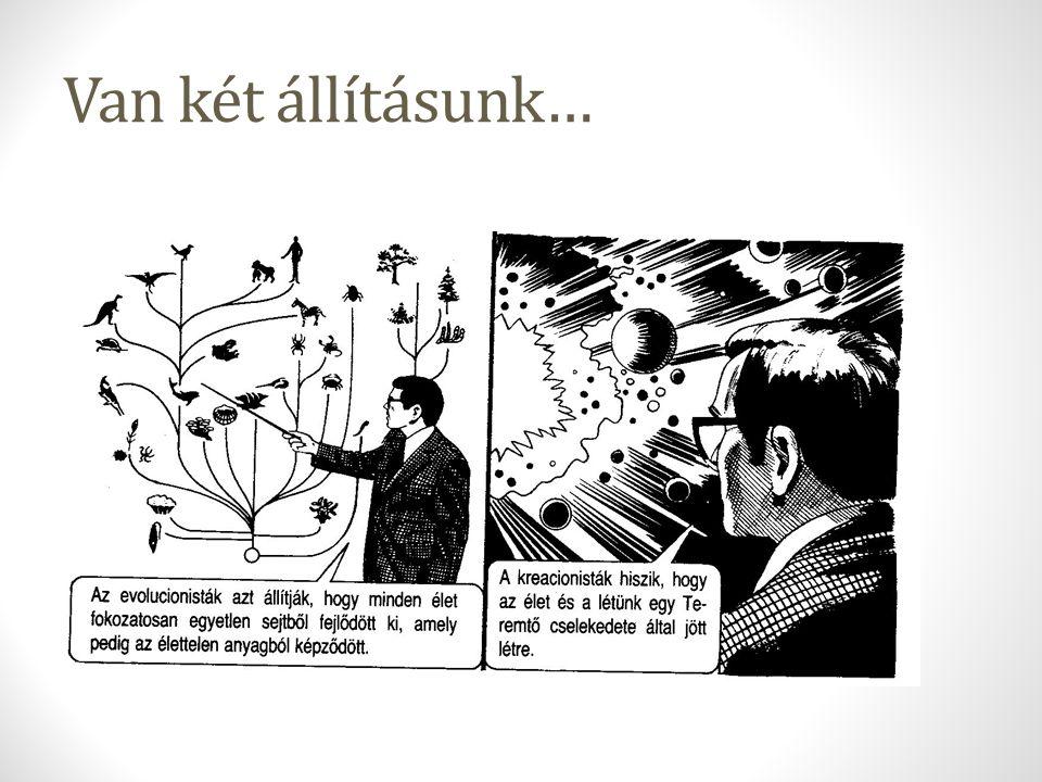 A kreácionizmus fő fajtái Új-Föld kreácionizmus: a Biblia története szó szerint, tudományos érvek elvetve Omphalos-elmélet: Ádámnak volt köldöke, holott nem született (P H Gosse, 1857): a történelmi adatok átvernek minket – kicsit hasonló a HGTTG-hoz (GUS) és Norvégia partjaihoz… Árvíz-geológia – paleontológia a nagy árvíz áldozatait vizsgálja