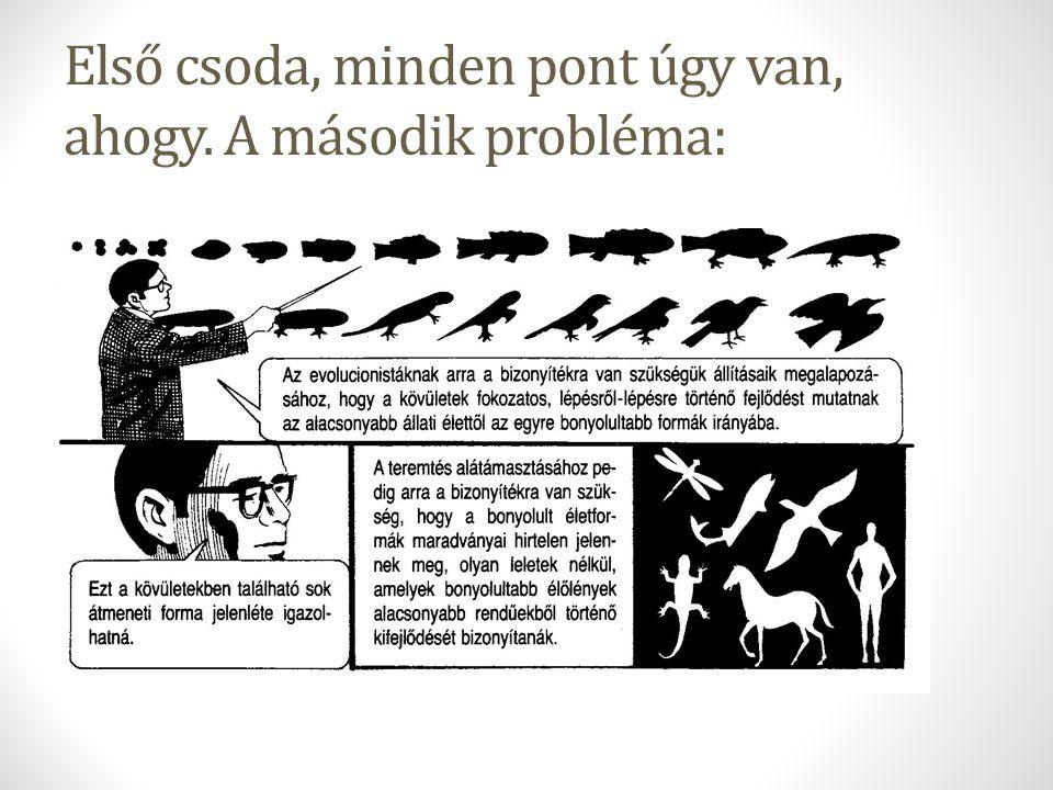 Empirista a tudomány, nézzük hát meg a tényeket: