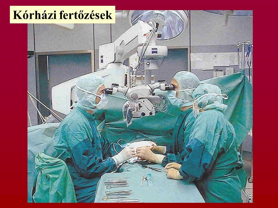 Kórházi fertőzések