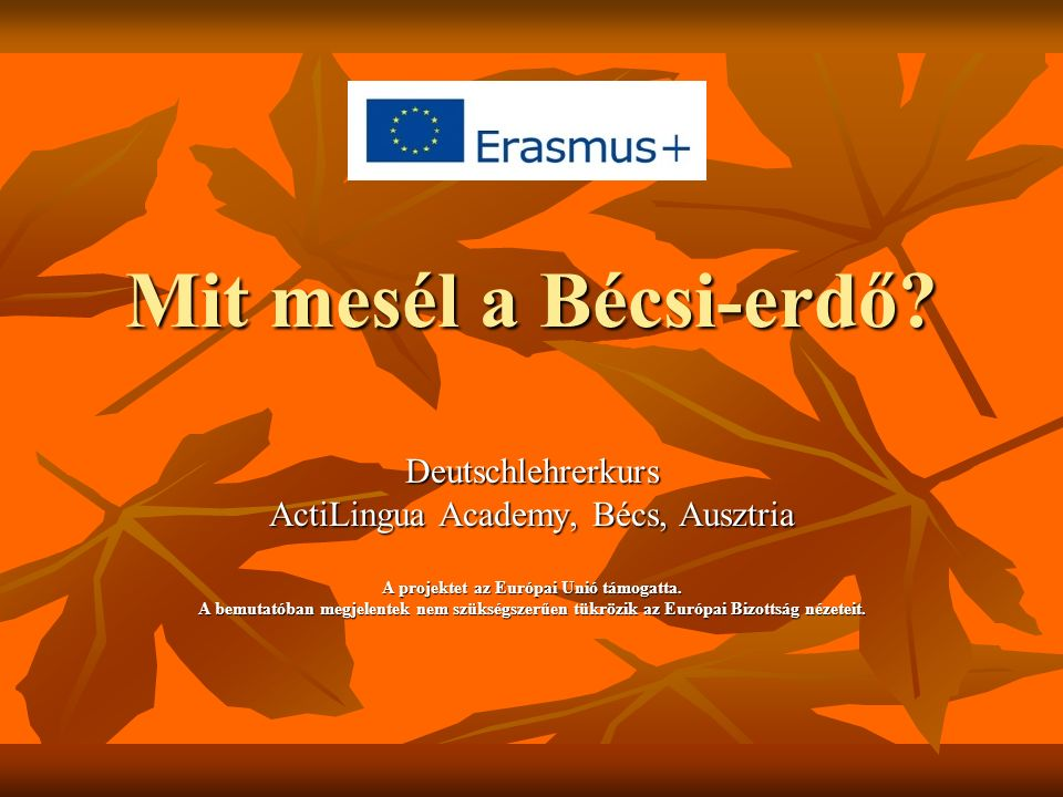 Mit mesél a Bécsi-erdő? Deutschlehrerkurs ActiLingua Academy, Bécs, Ausztria A projektet az Európai Unió támogatta. A bemutatóban megjelentek nem szük
