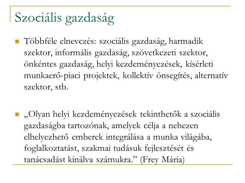 Szociális gazdaság Többféle elnevezés: szociális gazdaság, harmadik szektor, informális gazdaság, szövetkezeti szektor, önkéntes gazdaság, helyi kezde