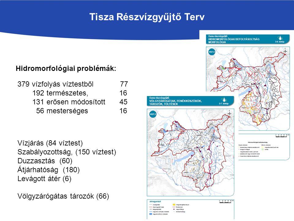 Tisza Részvízgyűjtő Terv Hidromorfológiai problémák: 379 vízfolyás víztestből 77 192 természetes, 16 131 erősen módosított 45 56 mesterséges 16 Vízjárás (84 víztest) Szabályozottság, (150 víztest) Duzzasztás (60) Átjárhatóság (180) Levágott átér (6) Völgyzárógátas tározók (66)