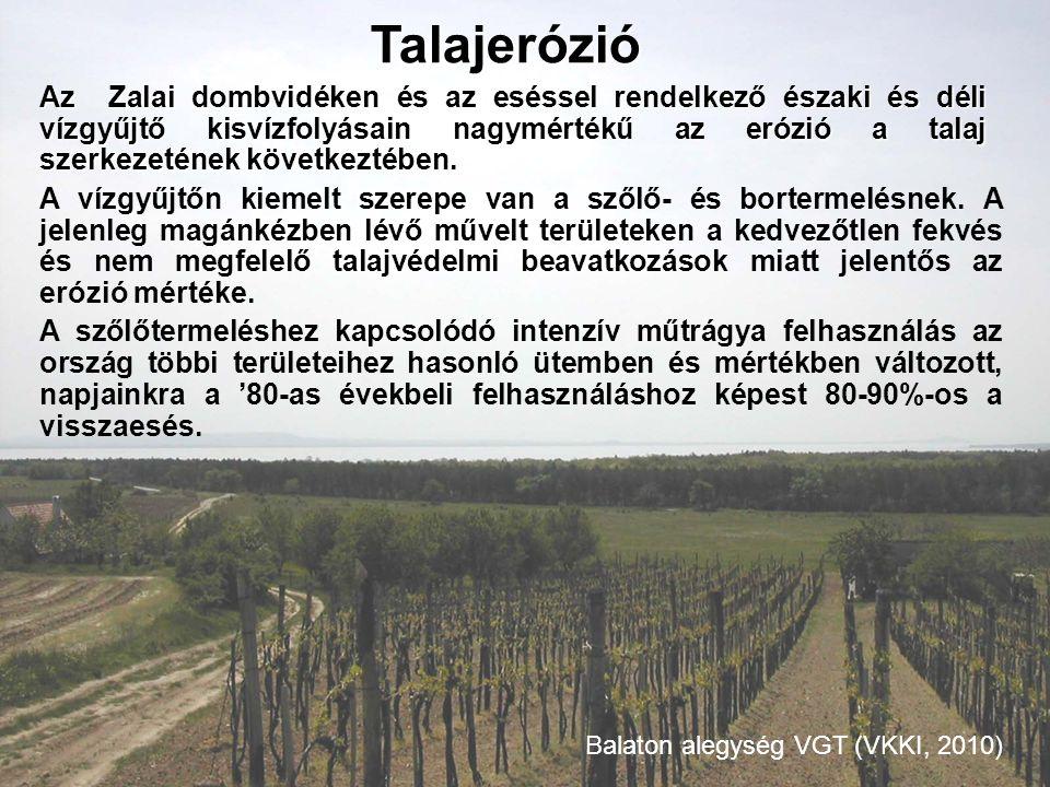 Az Zalai dombvidéken és az eséssel rendelkező északi és déli vízgyűjtő kisvízfolyásain nagymértékű az erózió a talaj szerkezetének következtében. A ví