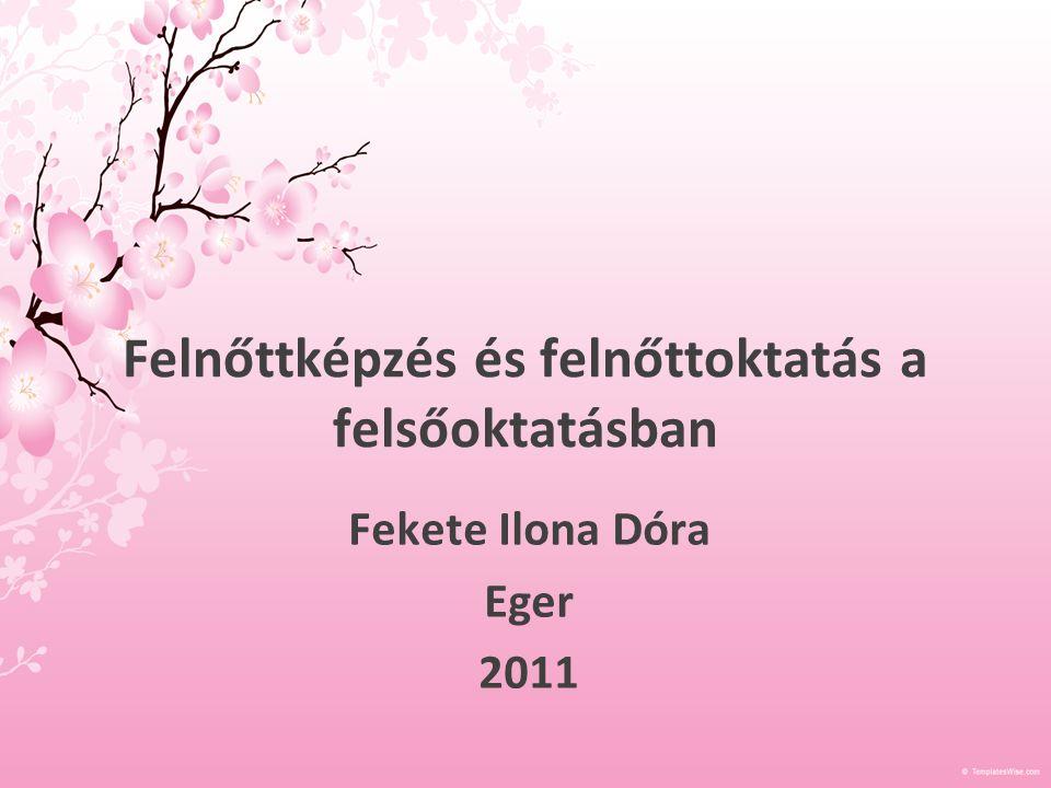 Felnőttképzés és felnőttoktatás a felsőoktatásban Fekete Ilona Dóra Eger 2011