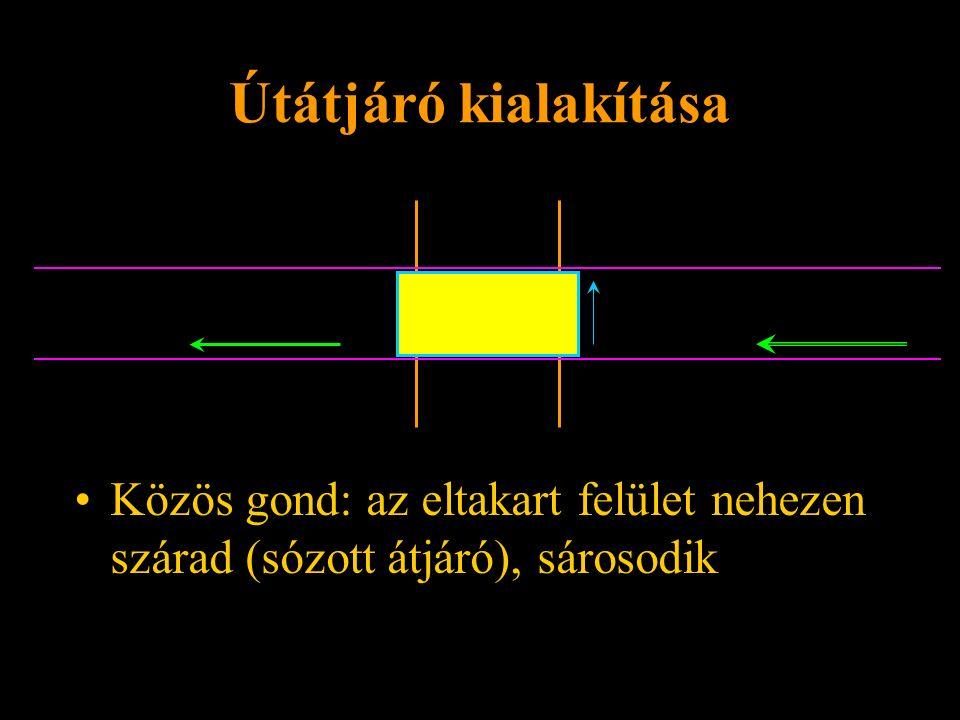 Útátjáró kialakítása Közös gond: az eltakart felület nehezen szárad (sózott átjáró), sárosodik Rétlaki Győző: Sorompók szigetelése