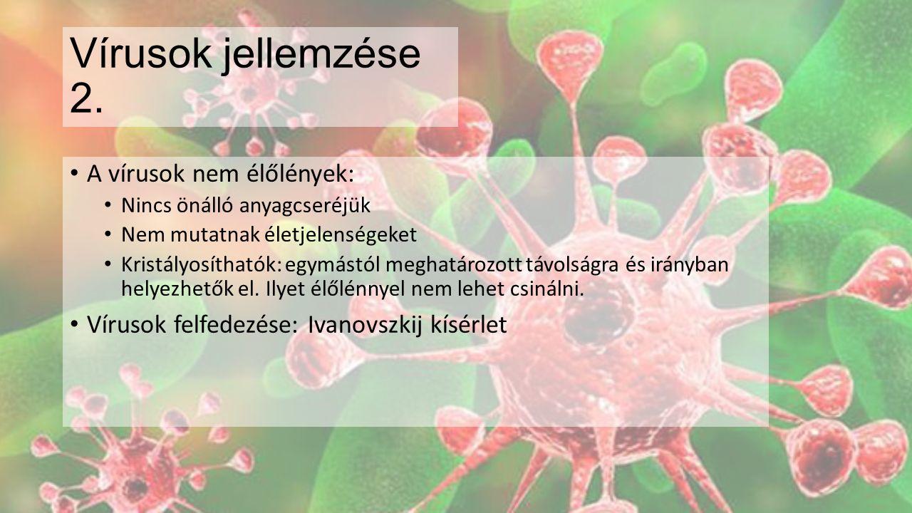 Vírusok sokszorozódása Vírusok szaporodása: Kötődik a sejthez: új biológiai egység jön létre a vírussal fertőzött sejt Örökítőanyagát a sejtbe juttatja: Beinjektálja Bekebelezteti magát a sejttel Leálltja a sejt anyagcseréjét Saját anyagait gyártatja a sejttel Összeszerelteti a sejttel az új vírusokat Kiszabadul a sejtből Sokszorozódás és nem szaporodás: 1 vírusból nem kettő, vagy néhány lesz, hanem sok ezer