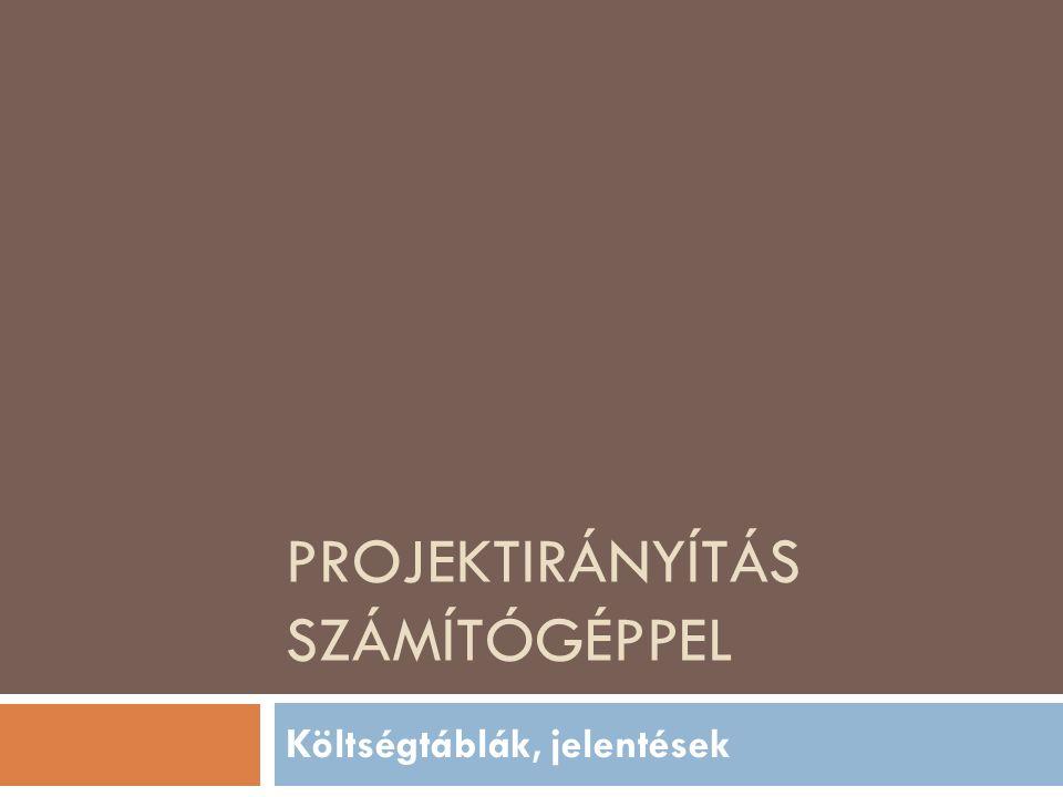 PROJEKTIRÁNYÍTÁS SZÁMÍTÓGÉPPEL Költségtáblák, jelentések