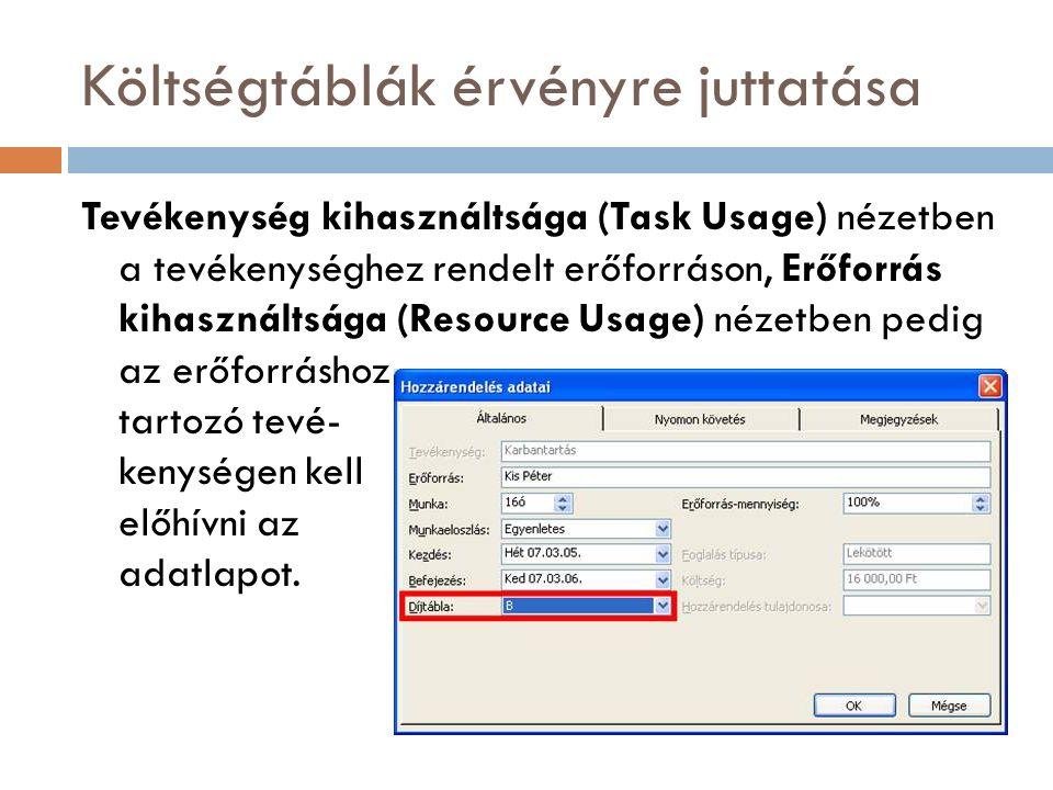 Költségtáblák érvényre juttatása Tevékenység kihasználtsága (Task Usage) nézetben a tevékenységhez rendelt erőforráson, Erőforrás kihasználtsága (Reso