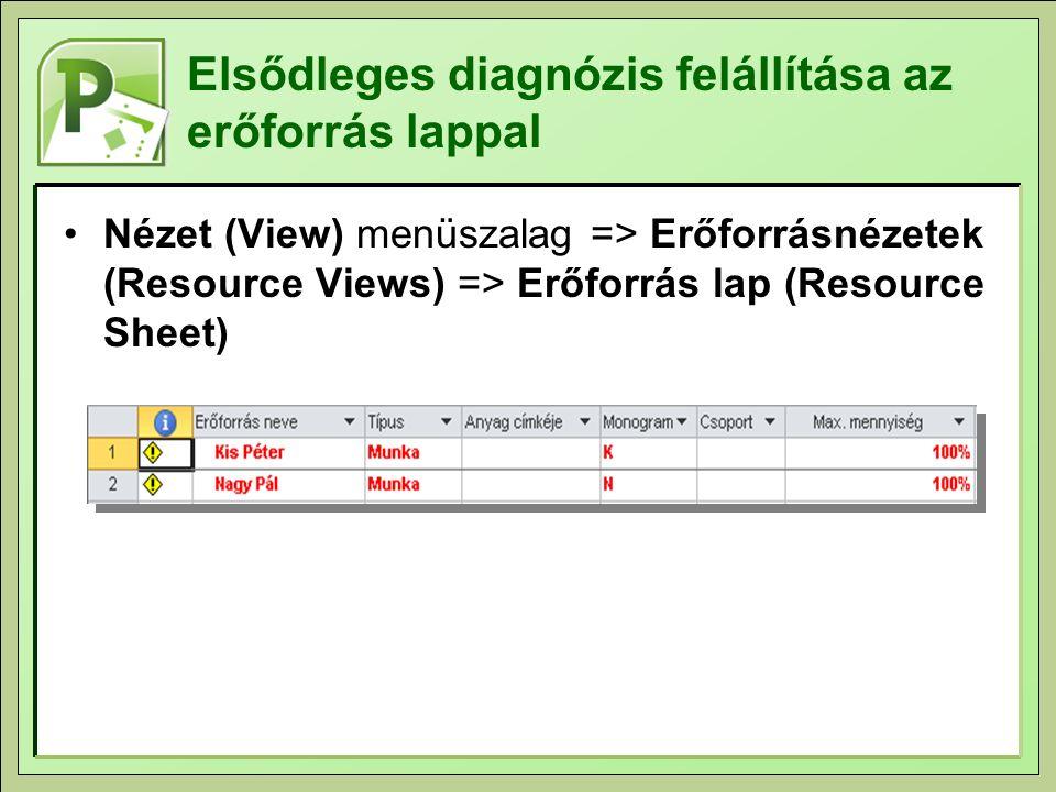 Elsődleges diagnózis felállítása az erőforrás lappal Nézet (View) menüszalag => Erőforrásnézetek (Resource Views) => Erőforrás lap (Resource Sheet)