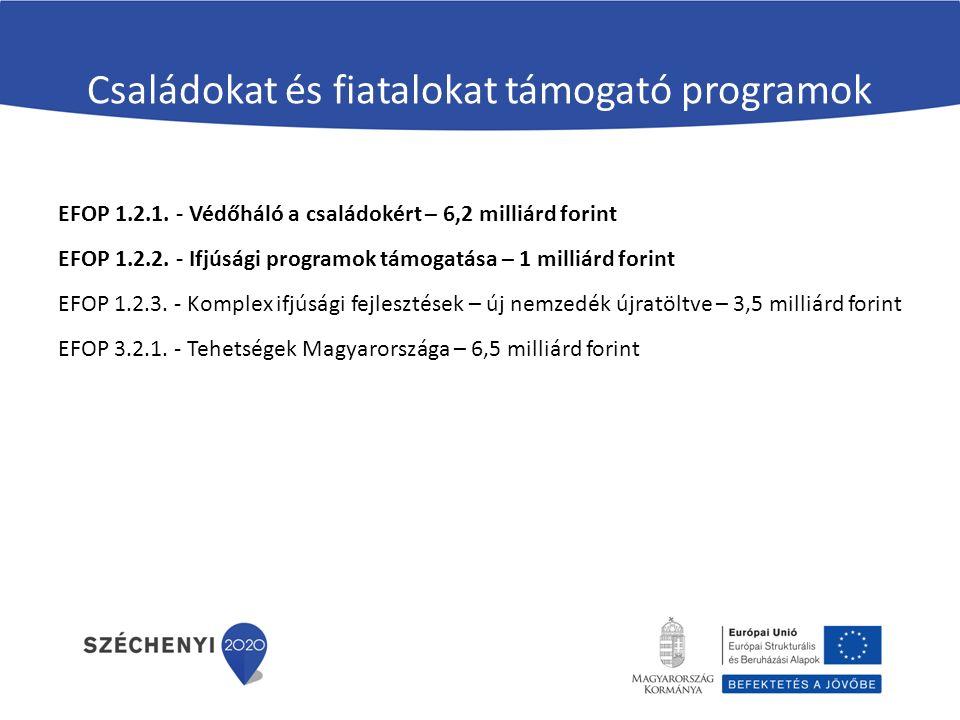 Családokat és fiatalokat támogató programok EFOP 1.2.1. - Védőháló a családokért – 6,2 milliárd forint EFOP 1.2.2. - Ifjúsági programok támogatása – 1