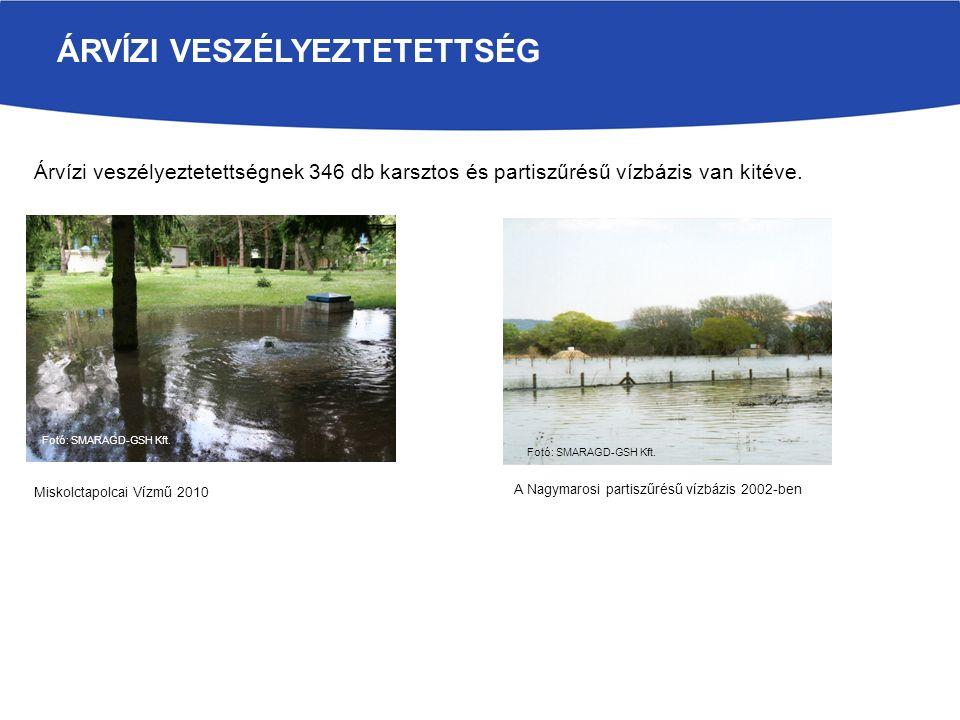 ÁRVÍZI VESZÉLYEZTETETTSÉG Fotó: SMARAGD-GSH Kft. A Nagymarosi partiszűrésű vízbázis 2002-ben Árvízi veszélyeztetettségnek 346 db karsztos és partiszűr