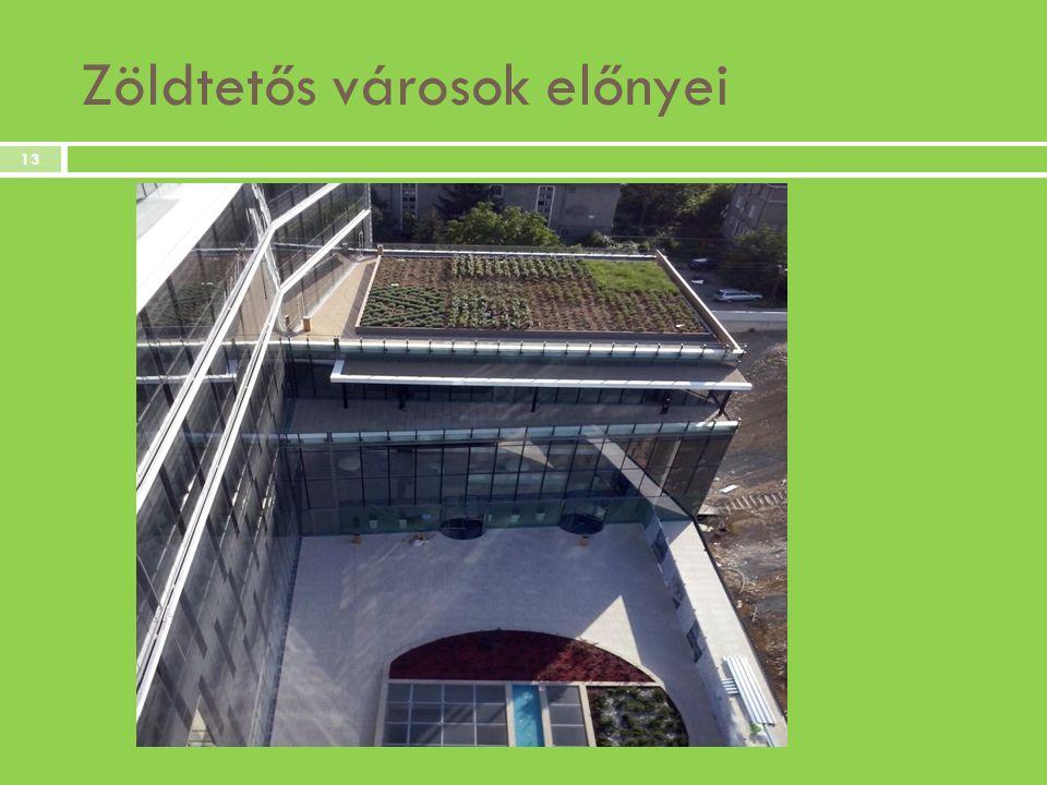 Zöldtetős városok előnyei 13
