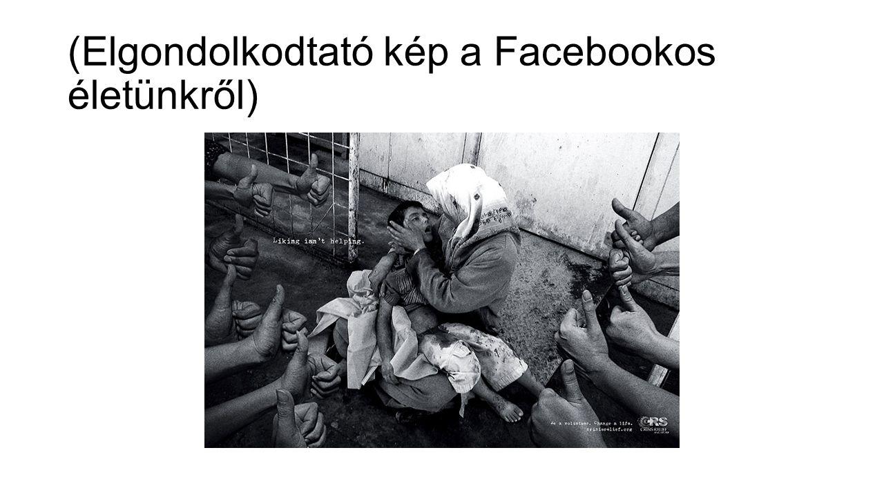 (Elgondolkodtató kép a Facebookos életünkről)