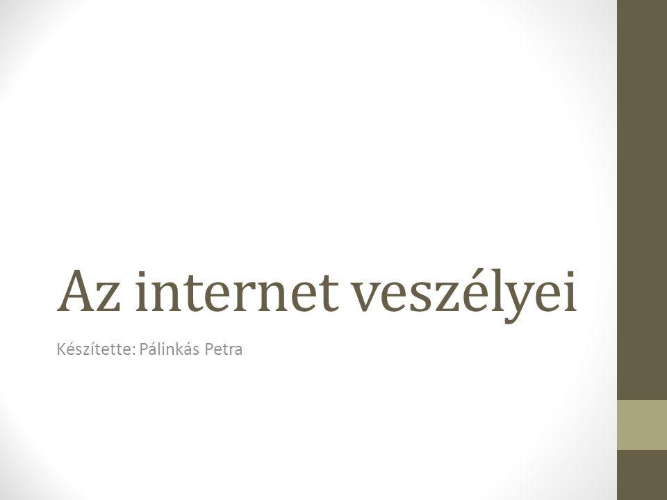 Az internet veszélyei Készítette: Pálinkás Petra