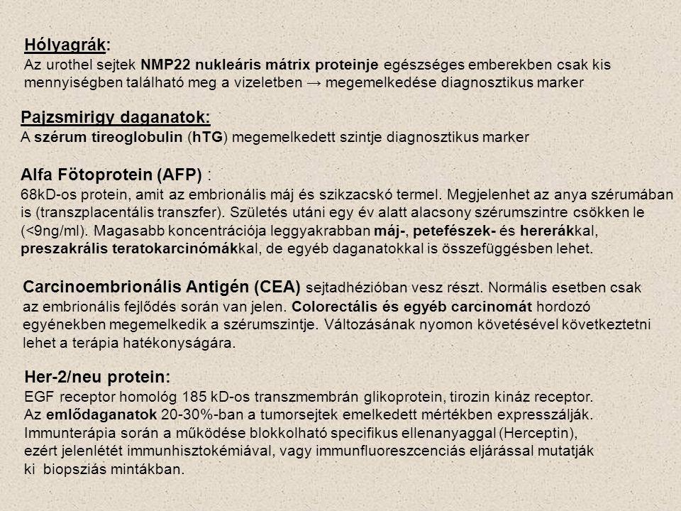 Hólyagrák: Az urothel sejtek NMP22 nukleáris mátrix proteinje egészséges emberekben csak kis mennyiségben található meg a vizeletben → megemelkedése diagnosztikus marker Pajzsmirigy daganatok: A szérum tireoglobulin (hTG) megemelkedett szintje diagnosztikus marker Alfa Fötoprotein (AFP) : 68kD-os protein, amit az embrionális máj és szikzacskó termel.