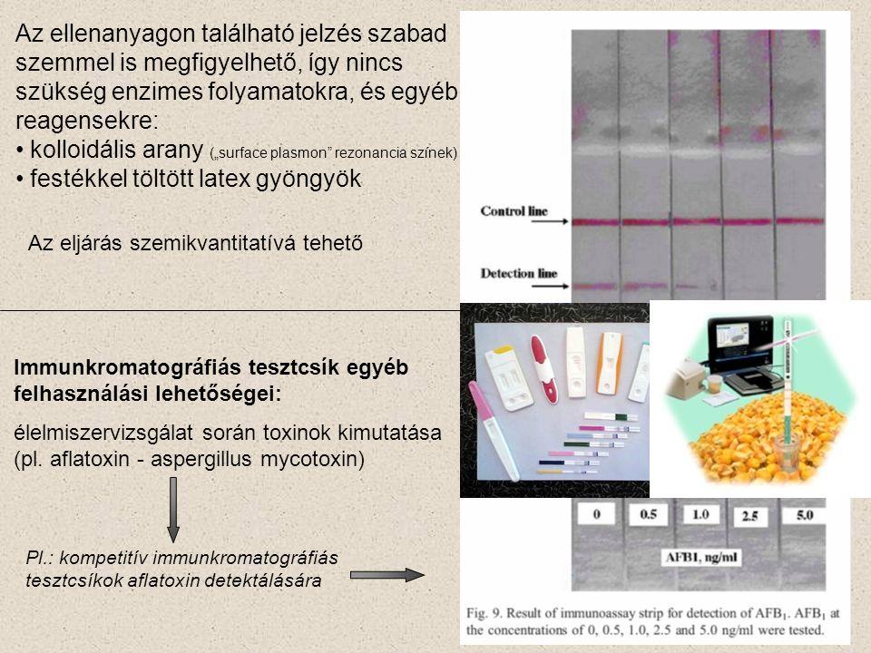 """Az ellenanyagon található jelzés szabad szemmel is megfigyelhető, így nincs szükség enzimes folyamatokra, és egyéb reagensekre: kolloidális arany (""""surface plasmon rezonancia színek) festékkel töltött latex gyöngyök Pl.: kompetitív immunkromatográfiás tesztcsíkok aflatoxin detektálására Az eljárás szemikvantitatívá tehető Immunkromatográfiás tesztcsík egyéb felhasználási lehetőségei: élelmiszervizsgálat során toxinok kimutatása (pl."""
